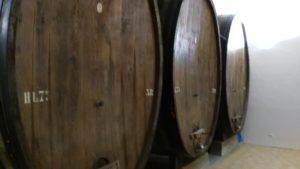 Le Antichi Botti di Vino della Cantina del Bramante